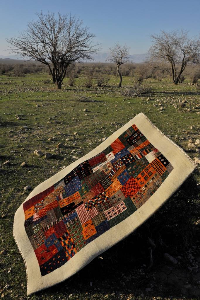 Rugs in Nature 206