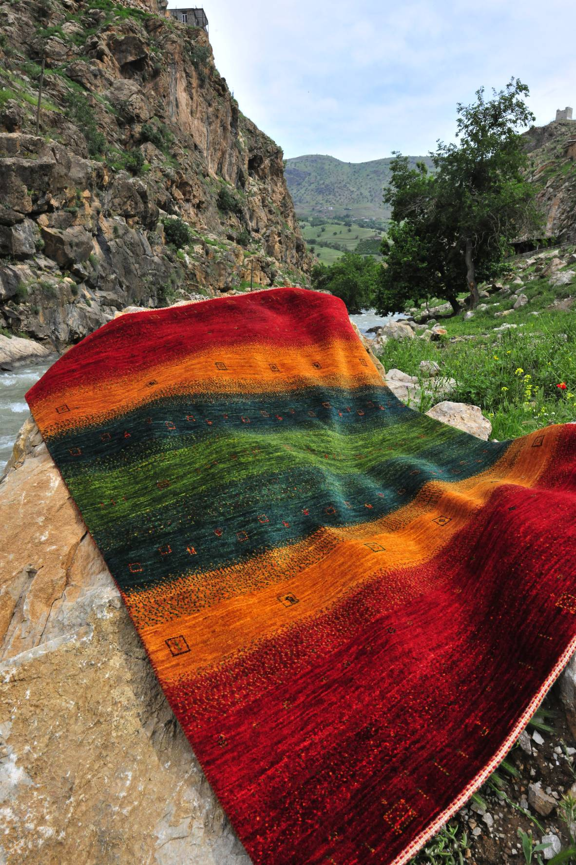 Rugs in Nature 216