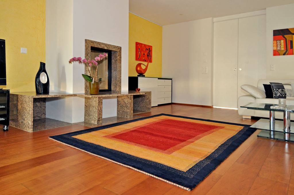 Rugs with Interior 110