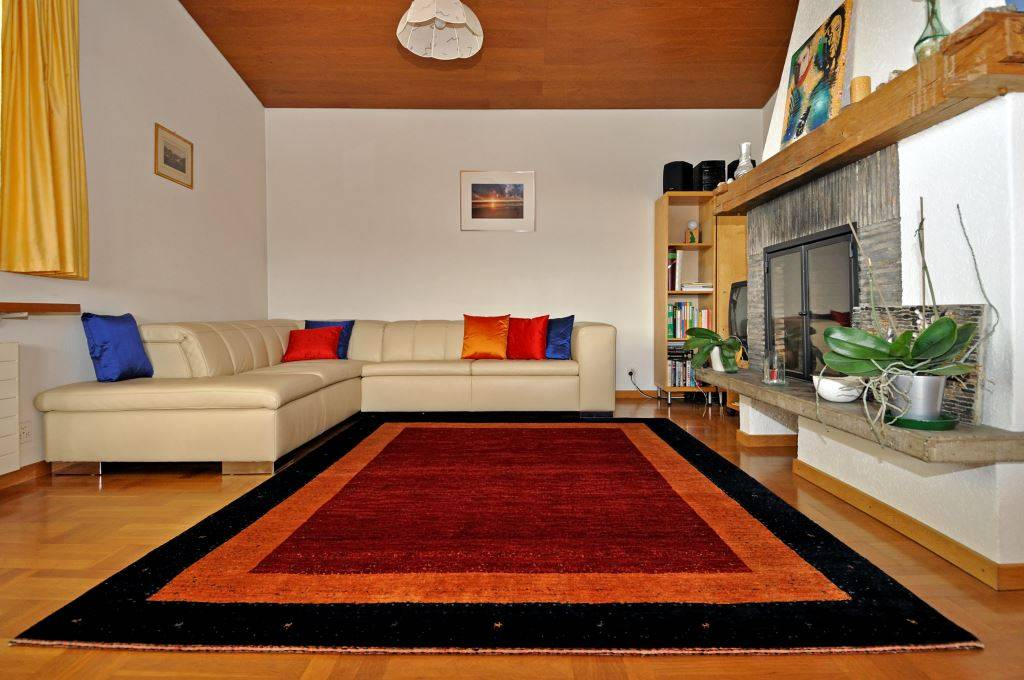 Rugs with Interior 113